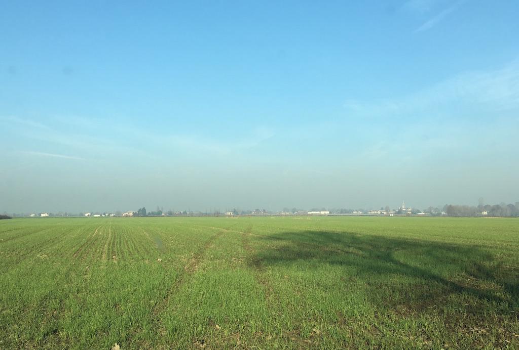 Terreno in vendita a Legnago